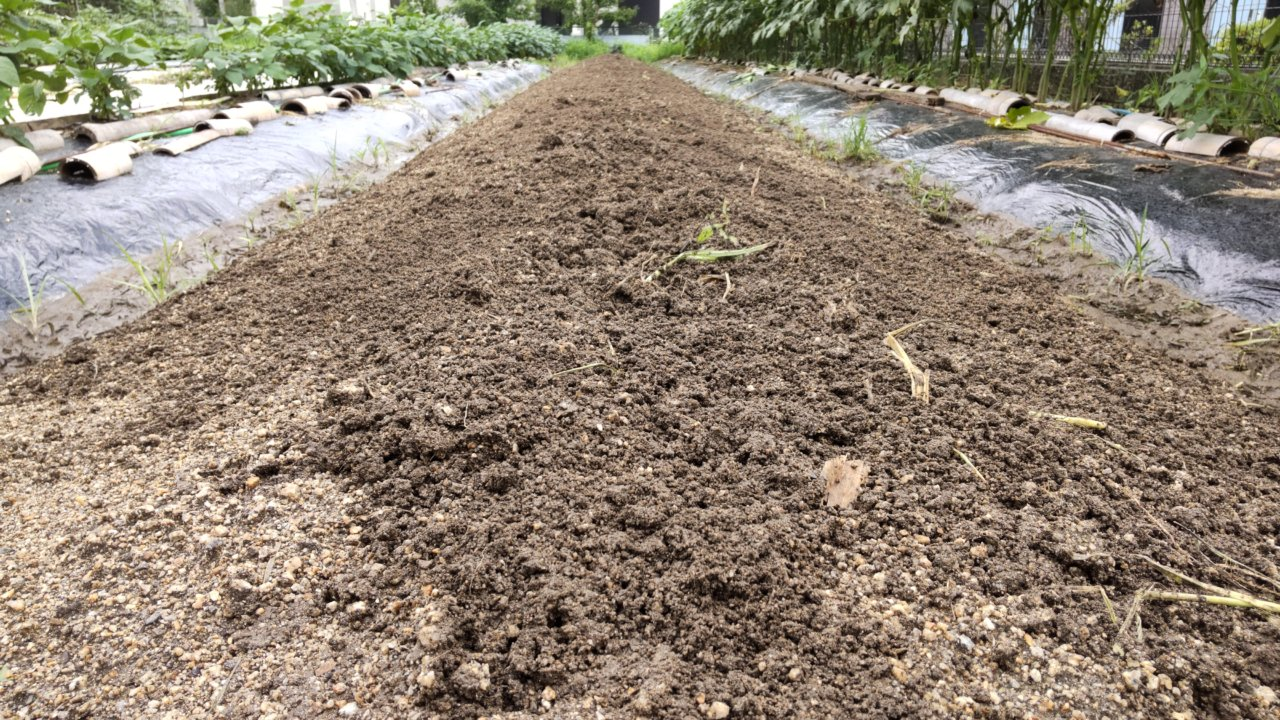 かまぼこ型に畝を作る