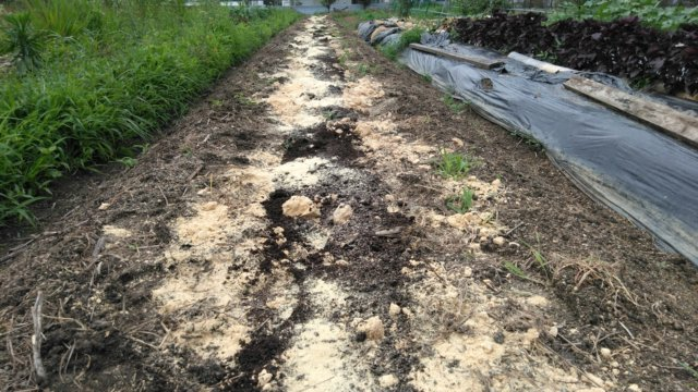 腐葉土、ぼかし肥料、堆肥、牡蠣殻石灰を投入する