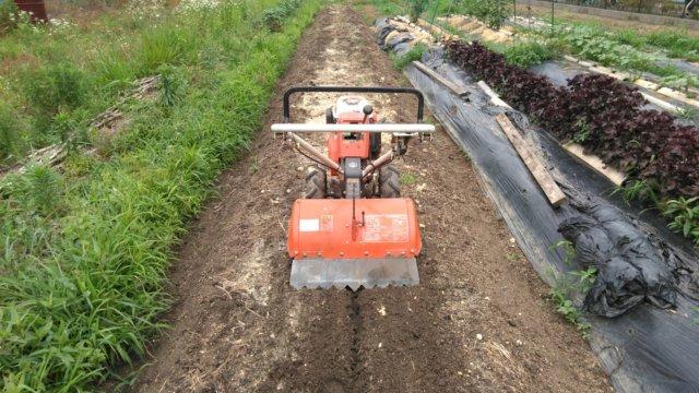 投入後、管理機で土と混和する