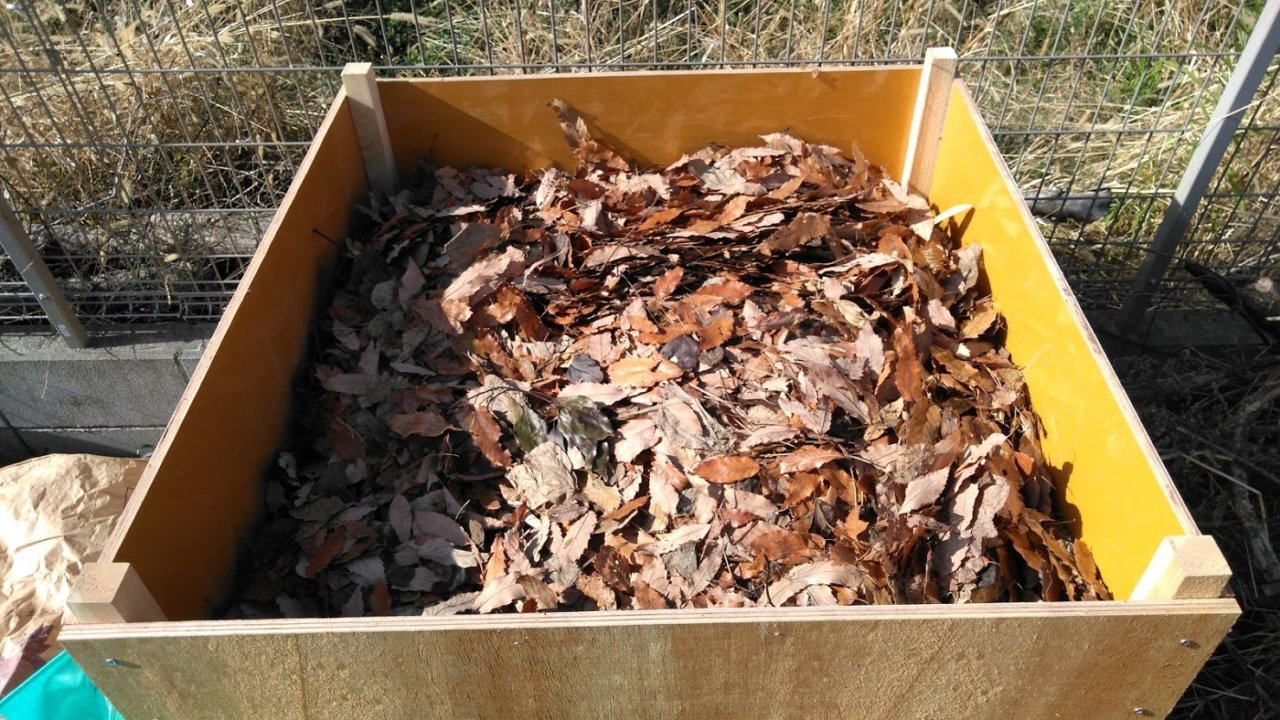 集めた落ち葉を腐葉土にする
