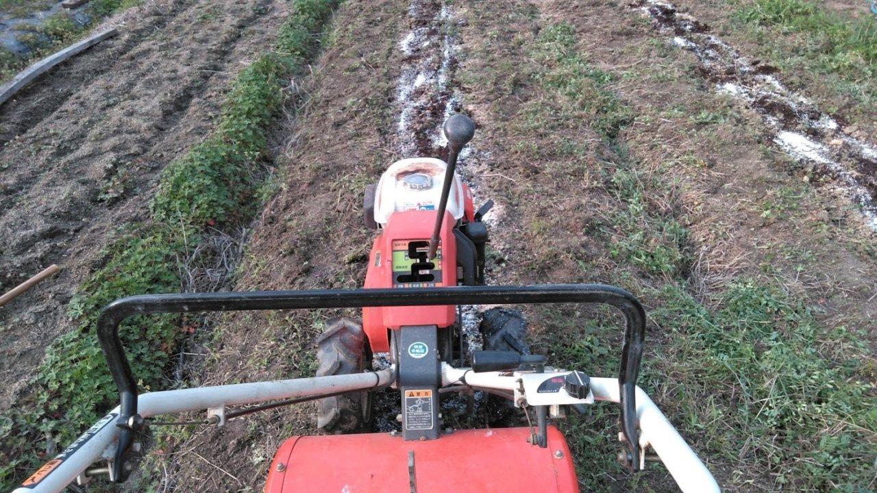 腐葉土、たい肥などを土にすき込む